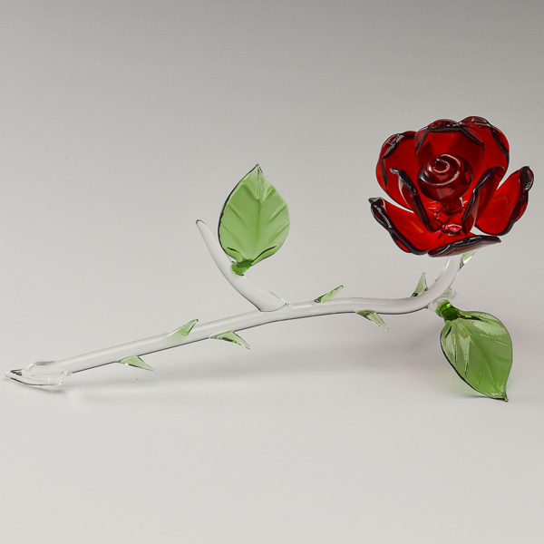 Rose Lying Red