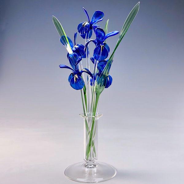 Irises Blue Transparent Medium