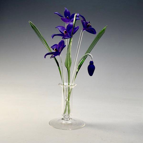 African Violets Medium