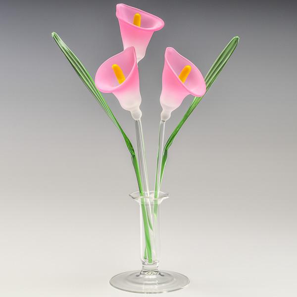 Arum Lilies Pink